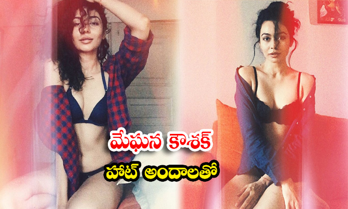 Meghana Kaushik Spicy Look images is turning up the heat-మేఘన కౌశిక్ హాట్ అందాలతో
