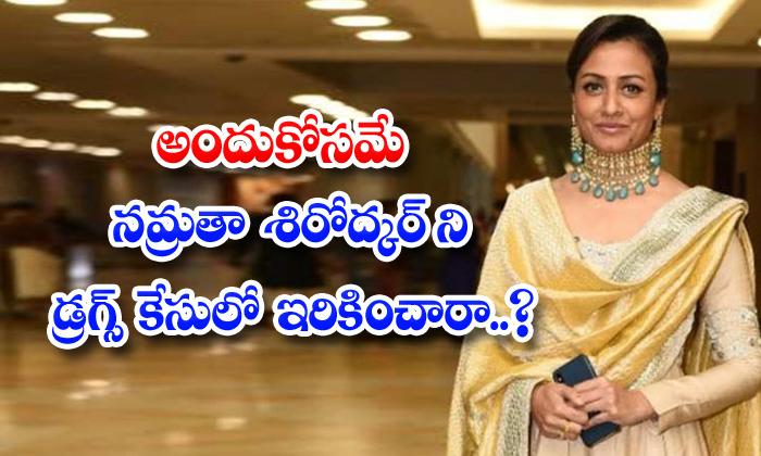 TeluguStop.com - National Media Fake News Spreading About Namrata Shirodkar For Trp Ratings