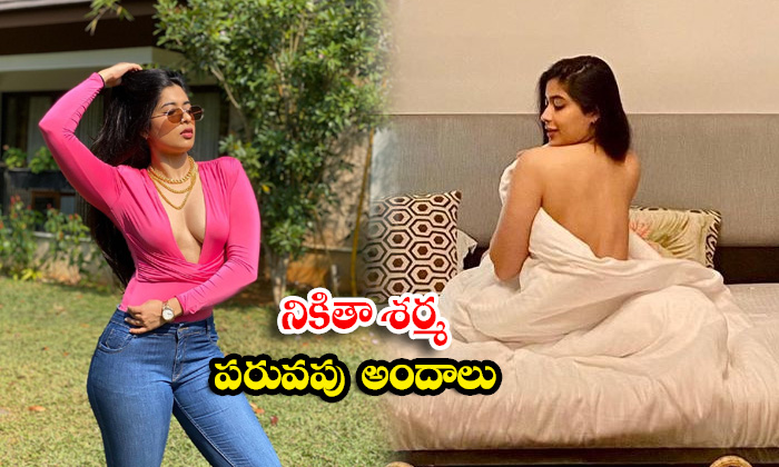 Nikita Sharma Spicy Images Will Make Your Heart Beat Faster-నికితా శర్మ పరువపు అందాలు