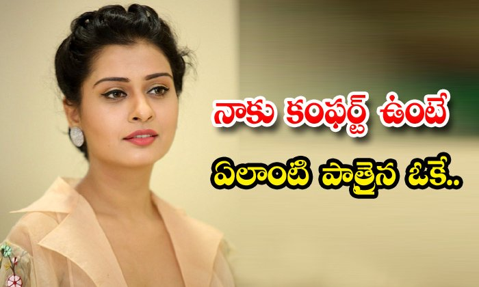TeluguStop.com - Payal Rajput Says She Needs Comfort In Role