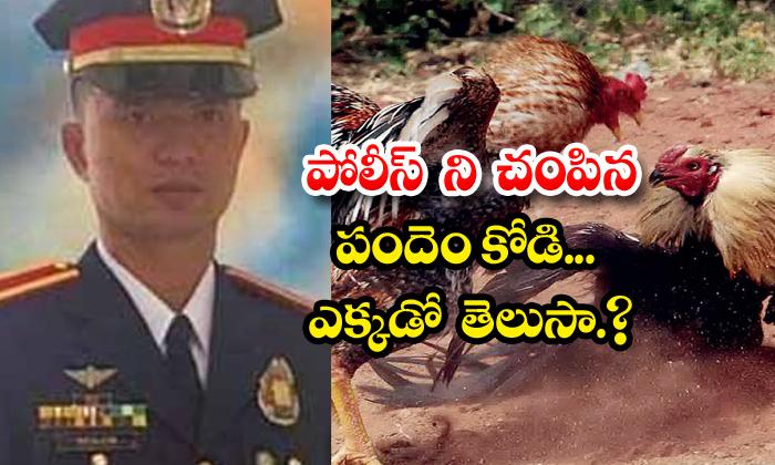 TeluguStop.com - Police Officer Died Cockfight Raid