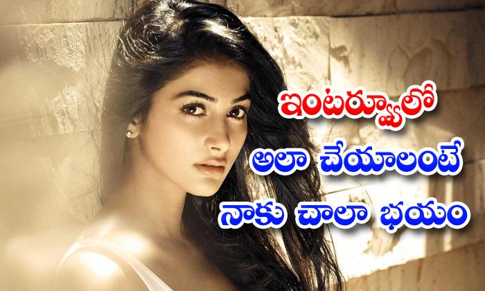 TeluguStop.com - Actress Pooja Hegde Says She Will Panic To Talk Telugu In Interviews