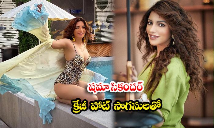 Spicy Actress Shama Sikander glamorous latest hot images-షమా సికందర్ క్రేజీ హాట్ సొగసులతో