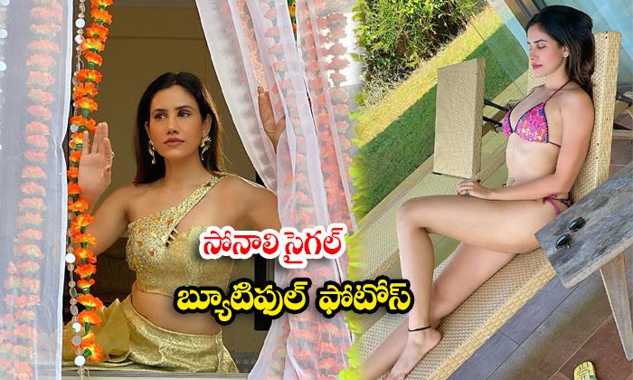 Tamil actress Sonnalli Seygall Stunning images-సోనాలి సైగల్ బ్యూటిఫుల్ ఇమేజస్