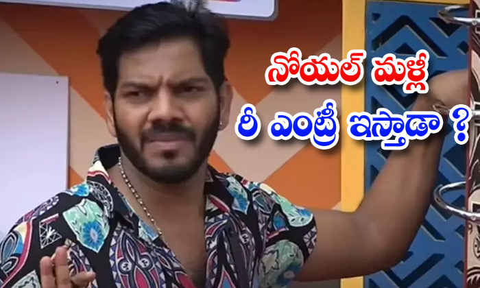 TeluguStop.com - Noel Will Come Back To Big Boss House