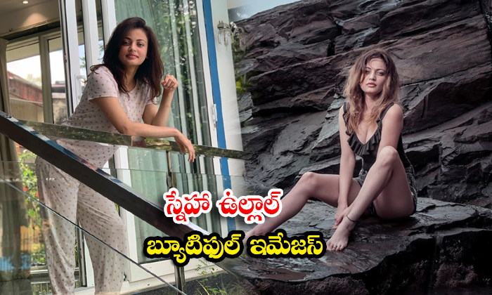 Telugu actress Sneha Ullal beautiful poses-స్నేహా ఉల్లాల్ బ్యూటిఫుల్ ఇమేజస్