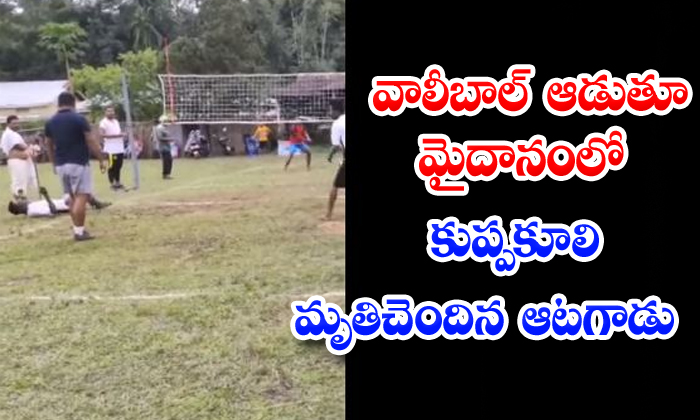 TeluguStop.com - Volleyball Player Died Heart Attack Assam State