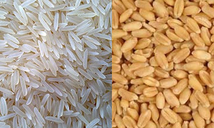TeluguStop.com - ఏ ఆహారం తింటే త్వరగా బరువు తగ్గుతారు-Latest News - Telugu-Telugu Tollywood Photo Image