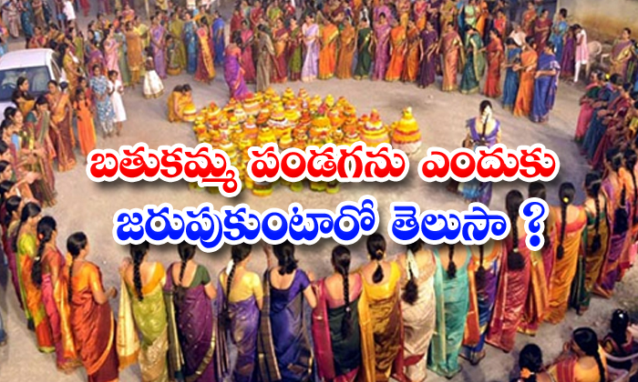 TeluguStop.com - Did You Know Why Bathukamma Festival Will Do