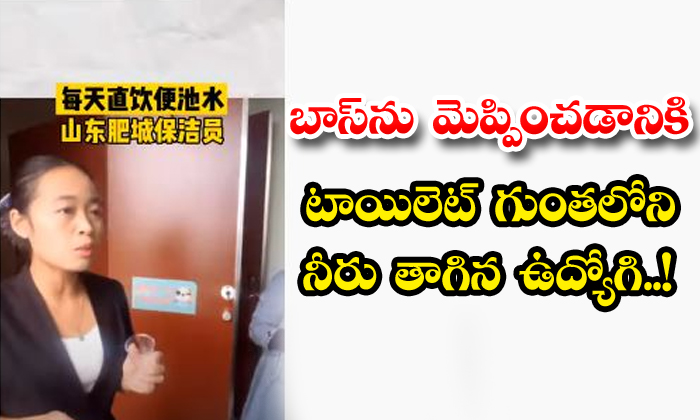 TeluguStop.com - An Employee Who Drank Water From The Toilet Pit To Impress The Boss