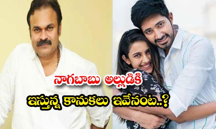 TeluguStop.com - Mega Brother Nagababu Marriage Assets To Son In Law Chaitanya