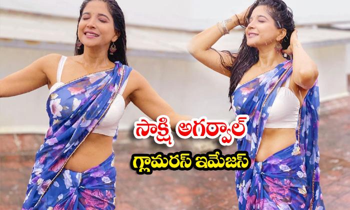 Actress Sakshi Agarwal glamorous images sweeping the internet-సాక్షి అగర్వాల్ గ్లామరస్ ఇమేజస్