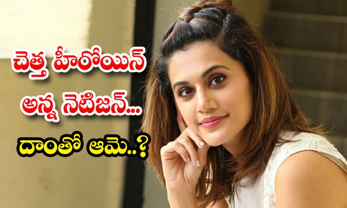 TeluguStop.com - Actress Tapsee Strong Reply To Netizen Comments