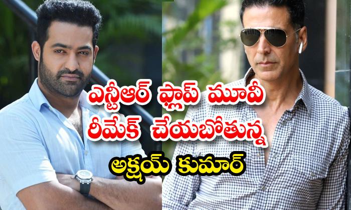 TeluguStop.com - Akshay Kumar Remake Jr Ntr Flop Movie