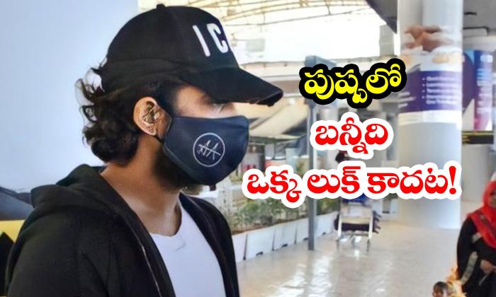 TeluguStop.com - Allu Arjun To Be Seen In Multiple Looks
