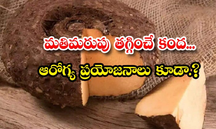 TeluguStop.com - Elephant Yam Helps To Reduce Forgetfulness