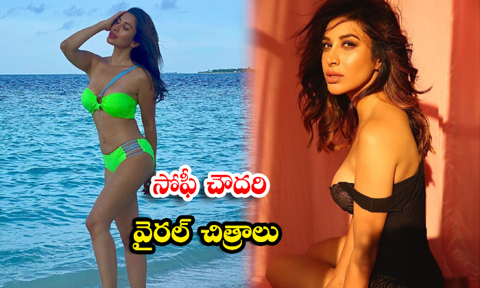 Beautiful HD images of Actress sophie choudry- సోఫీ చౌదరి వైరల్ చిత్రాలు