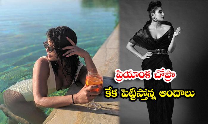 Beautiful Pictures of Celebrity Priyanka Chopra-ప్రియాంక చోప్రా కేక పెట్టిస్తోన్నఅందాలు