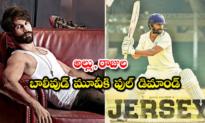TeluguStop.com - Nani Jersey Movie Remake In Bollywood With Shahid Kapoor