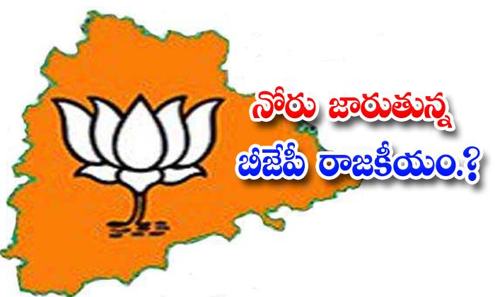 TeluguStop.com - Bjp Raghunandan Rao Sensational Comments On Ghmc Elections Canvasing