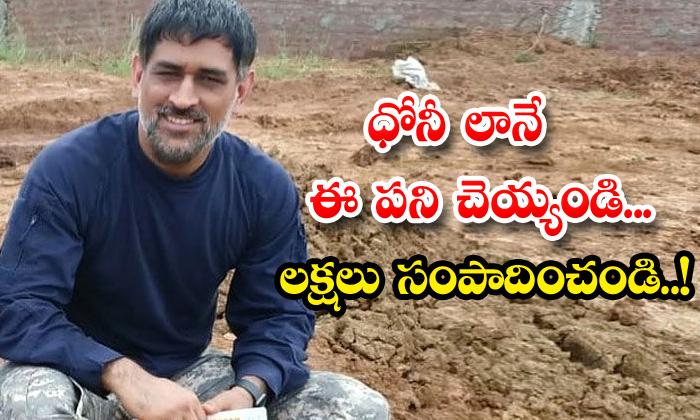 TeluguStop.com - Peas Farming Ms Dhoni More Earnings Viral