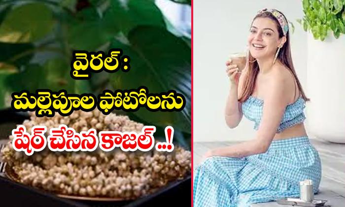 TeluguStop.com - Kajal Aggarwal About Flowers Fragrance
