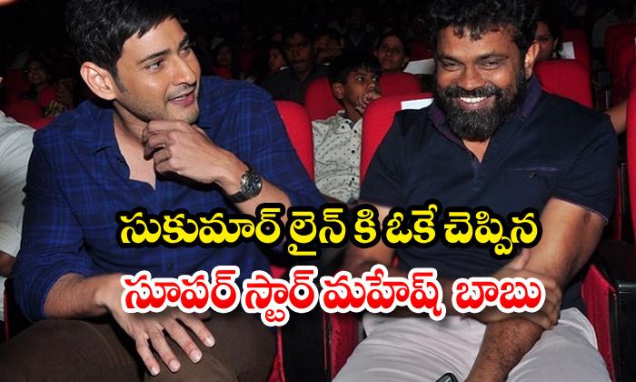 TeluguStop.com -  Mahesh Babu Signs Film With Director Sukumar