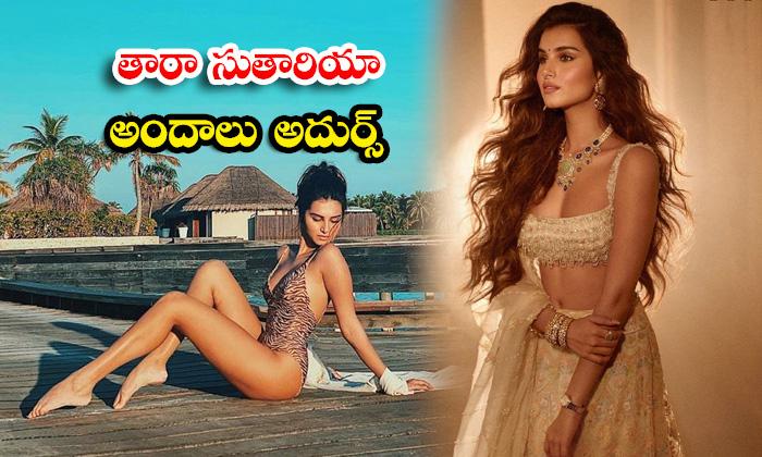 Mind blowing pictures of Actress Tara Sutaria- తారా సుతారియా అందాలు అదుర్స్