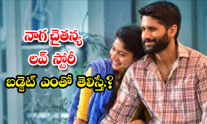 TeluguStop.com - Naga Chaitanya Love Story Movie Budget Details