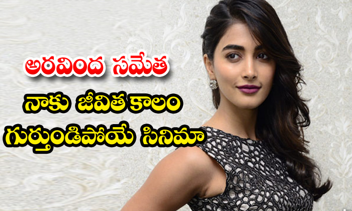 TeluguStop.com - Pooja Hegde Shares Aravinda Sametha Movie