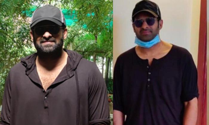 TeluguStop.com - Viral Photo: Rebel Star Prabhas Lost Weight For Adipurush.