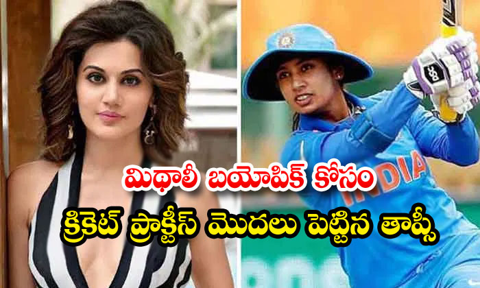 TeluguStop.com - Taapsee Batting Practice For Mithali Raj Biopic