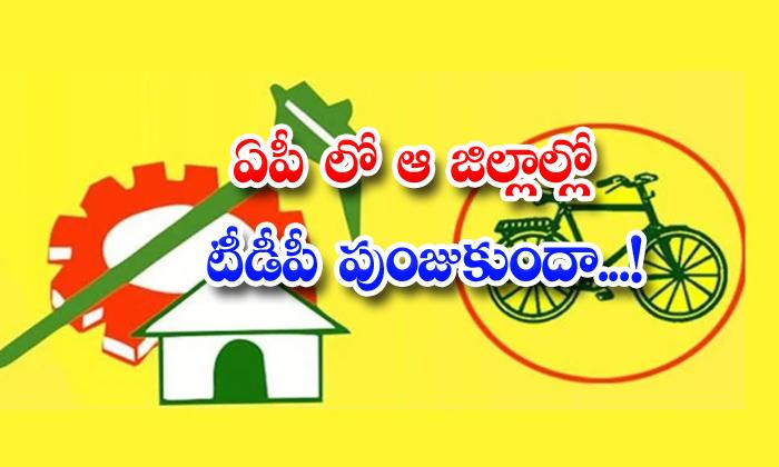 TeluguStop.com - Tdp Guntur District Ap Politics