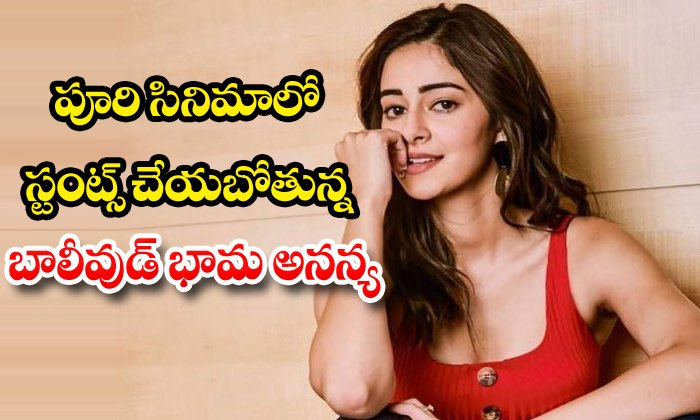 TeluguStop.com - Ananya Panday To Have Action Sequences In Fighter