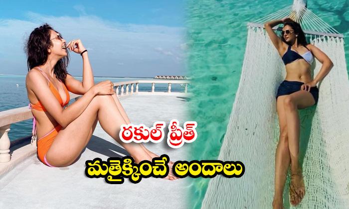 Tollywood actress Rakul Singh romantic beach stills-రకుల్ ప్రీత్ మత్తెక్కించే అందాలు