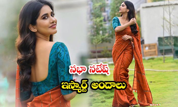 Tollywood beauty actress Nabha Natesh trendy clicks-నభా నటేష్ ఇస్మార్ట్ అందాలు
