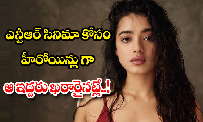 TeluguStop.com - Trivikram Srinivas Finalized Ketika Sharma For Ntr