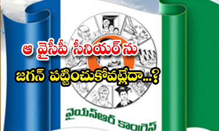 TeluguStop.com - Jagan Neglecting Senior Ycp Leader