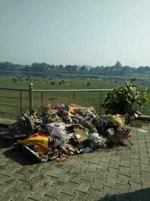 TeluguStop.com - Activists Remove Tons Of Garbage, Immersed Idols From Yamuna-Latest News English-Telugu Tollywood Photo Image