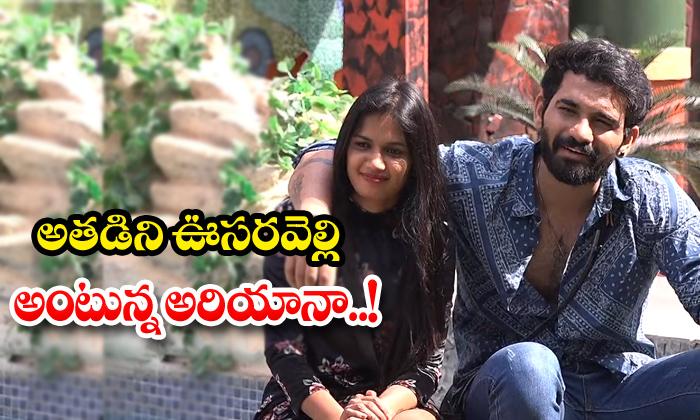 TeluguStop.com - Ariana Calling Him A Chameleon