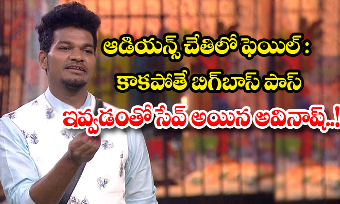 TeluguStop.com - Fail In The Hands Of The Audience Otherwise Avinash Saved By Giving The Bigg Boss Pass