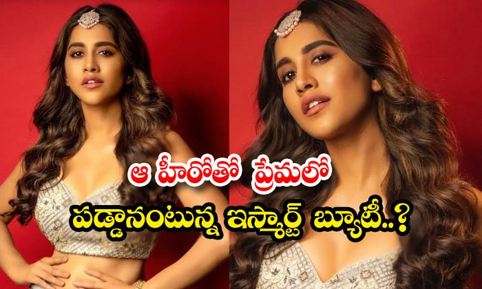 TeluguStop.com - Ismart Beauty Nabha Natesh Says Sharuk Khan Her Favoruite Hero