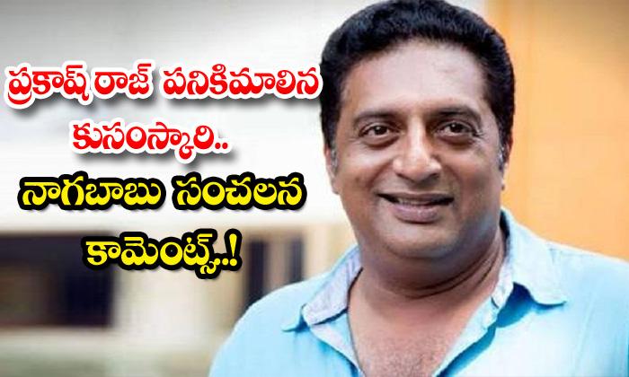 TeluguStop.com - Prakash Raj Useless Kusanskari Nagababu Sensational Comments