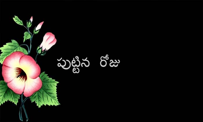 TeluguStop.com - పుట్టిన రోజు ప్రత్యేకత ఏంటి ఎందుకు జరుపుకోవాలి-Latest News - Telugu-Telugu Tollywood Photo Image