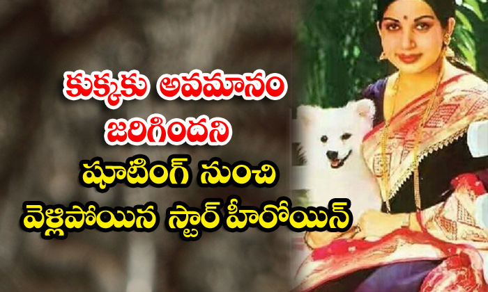 TeluguStop.com - Veteran Actress Jayalalitha Suddenly Quits From Shooting For Abasement On Her Dog