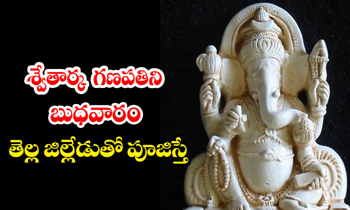 TeluguStop.com - What If Swetarka Ganapati Is Worshiped With A White District