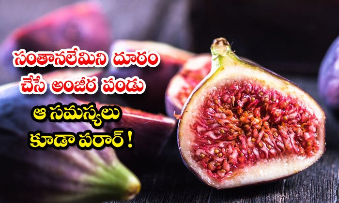 TeluguStop.com - Figs Latest News Health Tips