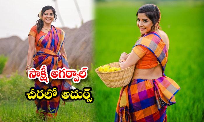 Actress Sakshi Agarwal Glamorous Saree Images-సాక్షి అగర్వాల్ చీరలో అదుర్స్