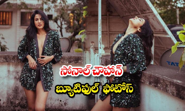Alluring pictures of beauty Sonal Chauhan-సోనాల్ చౌహాన్ బ్యూటిఫుల్ ఫొటోస్