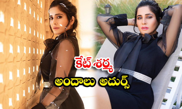 Bollywood heroine kate sharma romantic clicks-కేట్ శర్మ అందాలు అదుర్స్